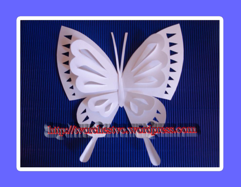 Белая бабочка | Творим вместе