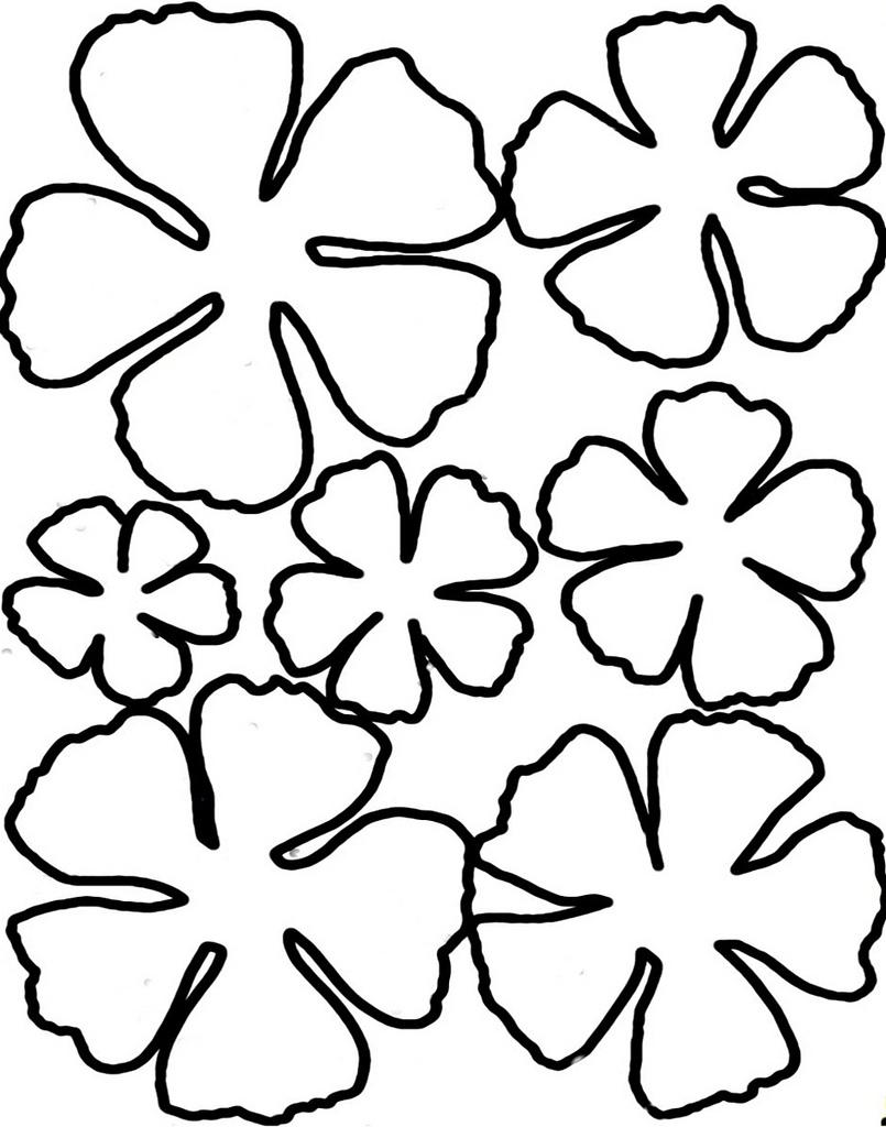Шаблон цветы